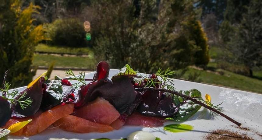 Gastronomía en Bariloche: Sabores, Texturas y Colores