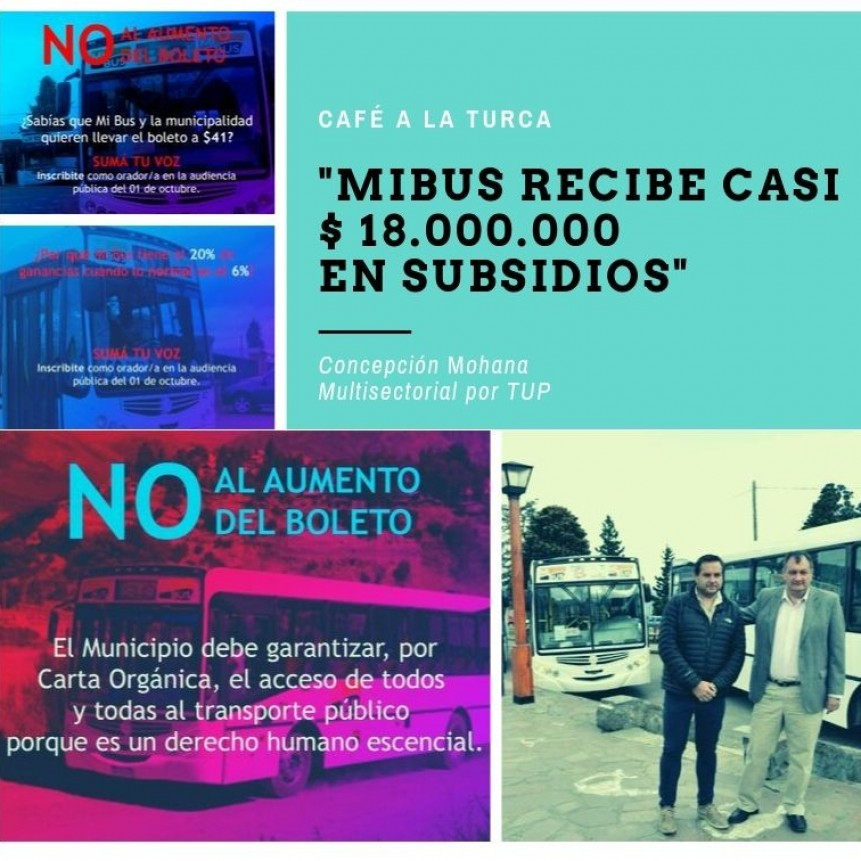 Entrevista a Concepción Mohana, de la Multisectorial por el Transporte Urbano de Pasajeros.
