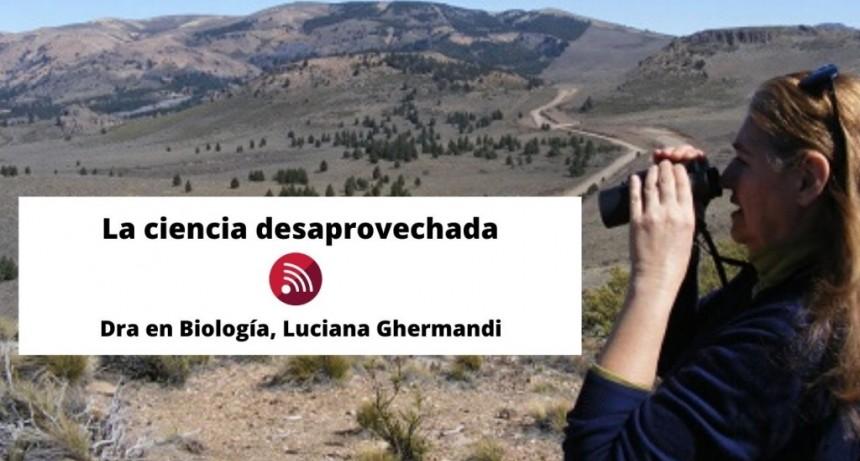 #Pandemia: preocupación del sector de científicos y universitarios de Bariloche